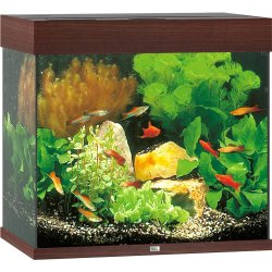 Juwel Aquarium Set Lido LED dunkles Holz 120 l